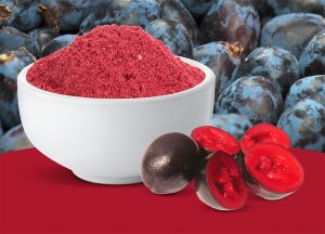 Freeze dried Davidson Plum
